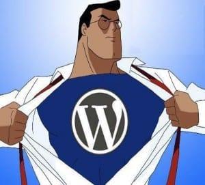 The WordPress Helpers WordPress Training Program