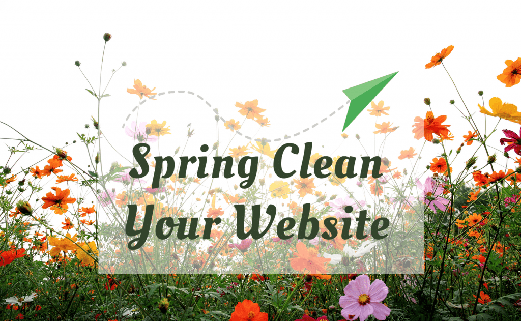 SEO Check Spring Clean Your Website
